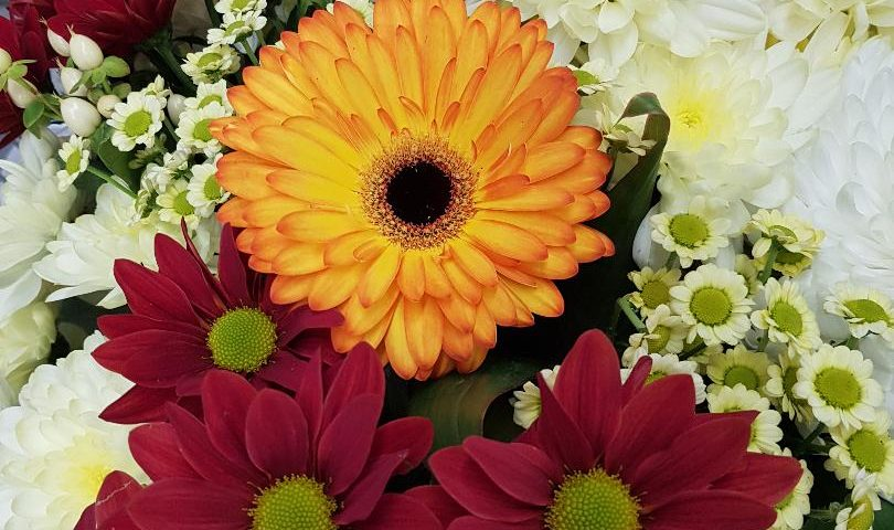 What Flowers To Buy In Nigeria Flowerandballooncompany Com